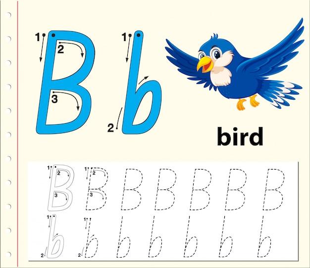 Traccia la lettera b