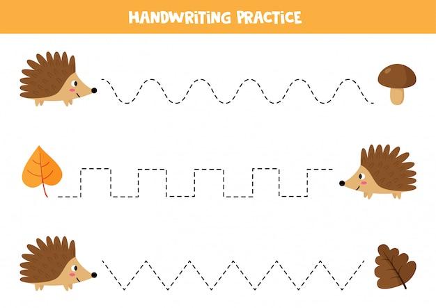 Traccia le linee tra il riccio e le sue foglie. foglio di lavoro per bambini.
