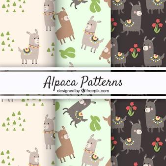 Tre modelli di alpaca