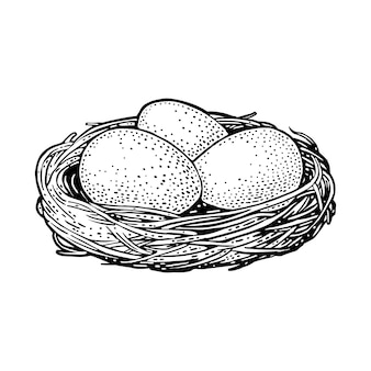 Tre uova di uccelli nel nido