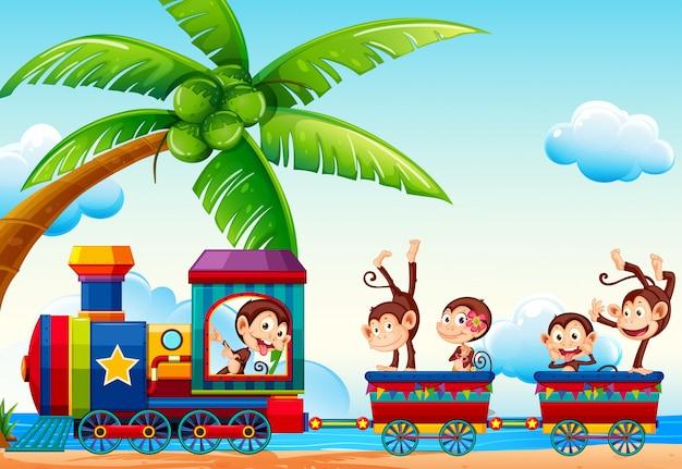 Treno e scimmie