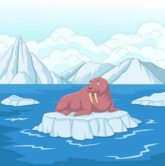 Tricheco di cartone animato su un lastrone di ghiaccio