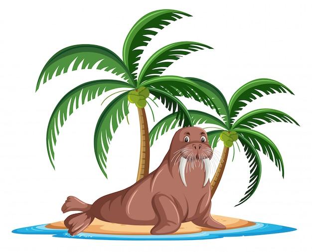 Tricheco nel personaggio dei cartoni animati tropicale dell'isola su fondo bianco