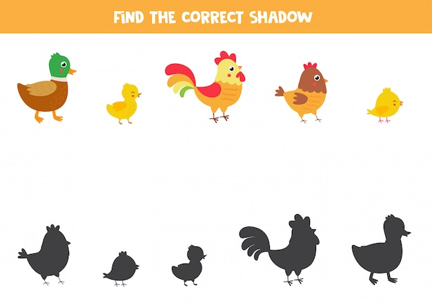 Trova la giusta ombra di uccelli da fattoria simpatico cartone animato.