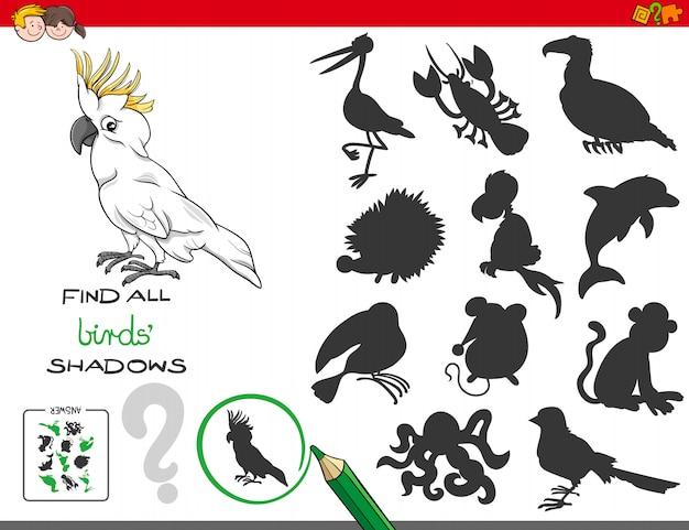 Trovare tutti gli uccelli attività educativa per i bambini