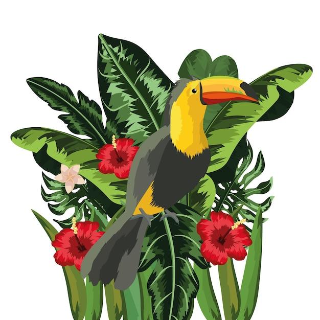 Tucano con i fiori e fondo delle piante delle foglie tropicali