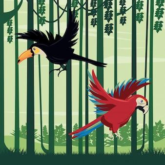 Tucano selvatico e uccelli pappagallo che volano nella scena della giungla