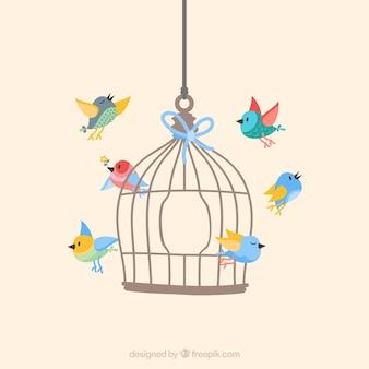 Uccelli che volano da gabbia