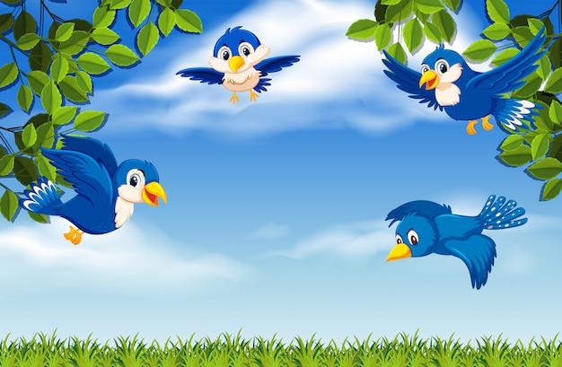 Uccelli che volano sul cielo