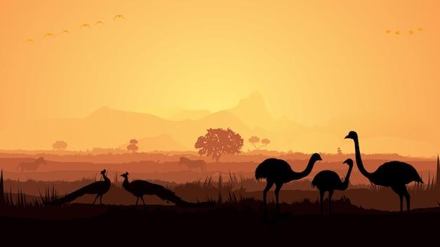 Uccelli della giungla