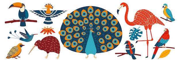 Uccelli tropicali esotici su personaggi dei cartoni animati bianchi e disegnati a mano, illustrazione