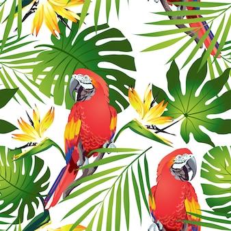 Uccelli tropicali pappagalli colorati e fiori esotici