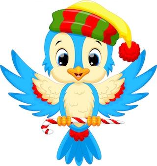 Uccello carino che indossa un cappello da babbo natale mentre trasporta caramelle