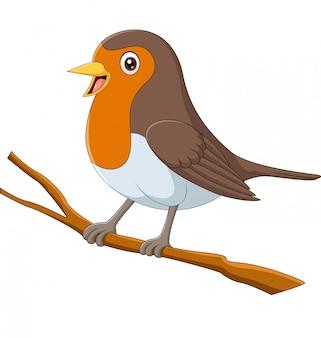 Uccello del pettirosso del fumetto che si siede su un ramo di albero