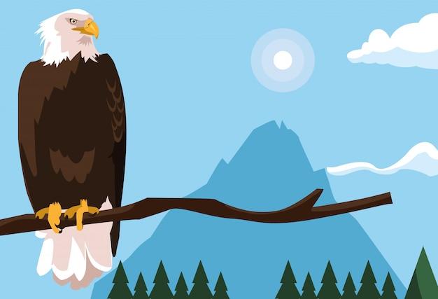 Uccello dell'aquila calva nel ramo con paesaggio