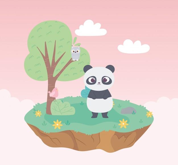 Uccello e gufo svegli del panda nella natura dell'albero e dei fiori del prato del fumetto degli animali del ramo