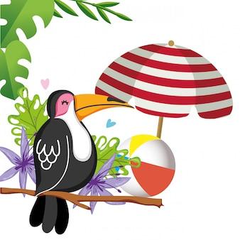 Uccello esotico ed estate