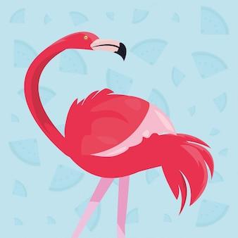 Uccello fenicottero rosa esotico