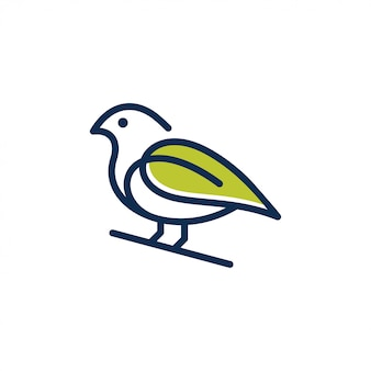 Uccello logo design vettoriale.