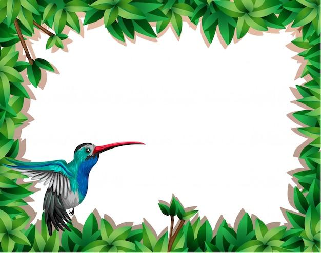 Uccello nella scena della natura