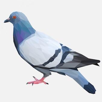 Uccello piccione con stile lowpoly