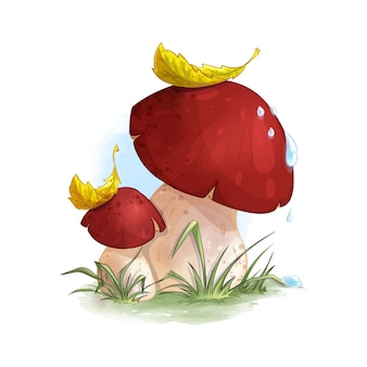 Un boletus di due funghi nell'erba della foresta.