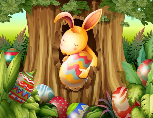 Un coniglio dentro il buco di un albero circondato da uova