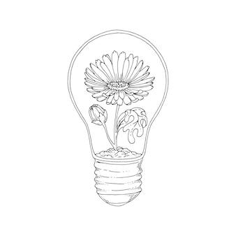 Un fiore in una lampadina.
