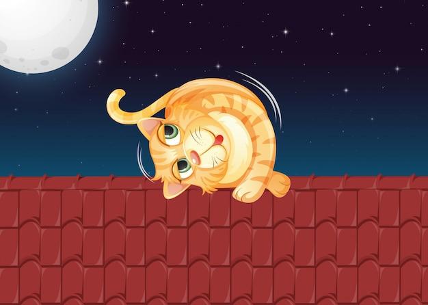 Un gatto che rotola sul tetto