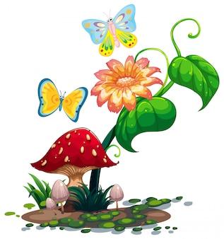 Un grande fiore vicino al fungo con due farfalle