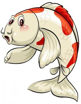 Un grande pesce