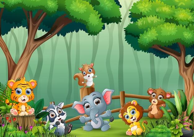 Un gruppo un principe con animali nella foresta di cuccioli di animali che giocano all'interno della staccionata in legno