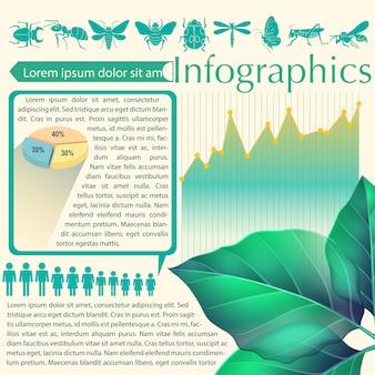 Un infografica di una foglia