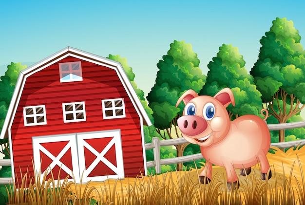 Un maiale alla fattoria