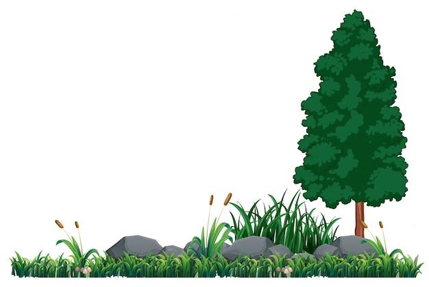Un modello di natura vuota