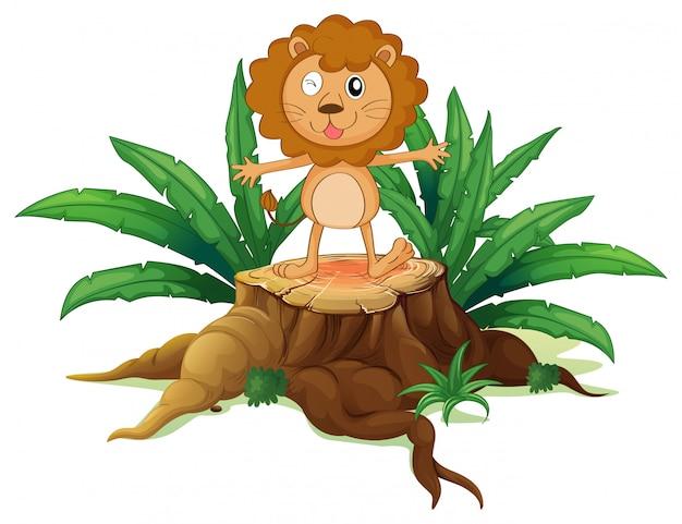 Un moncone con un piccolo leone