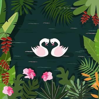 Un paio di cigni nel fiume della foresta tropicale.