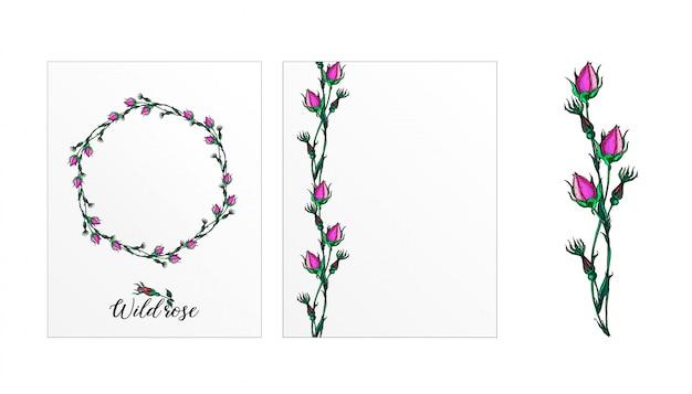 Un set di cartoline con fiori di rosa. fiori rosa. rosa.