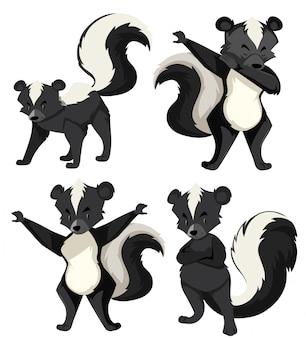 Un set di skunk