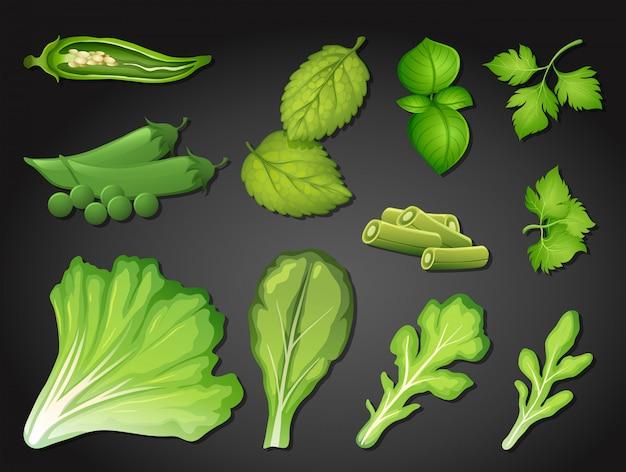 Un set di verdura verde fresca