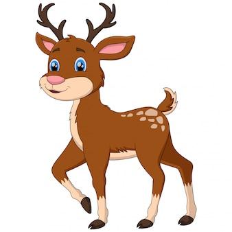 Un simpatico cartone animato di cervo su bianco