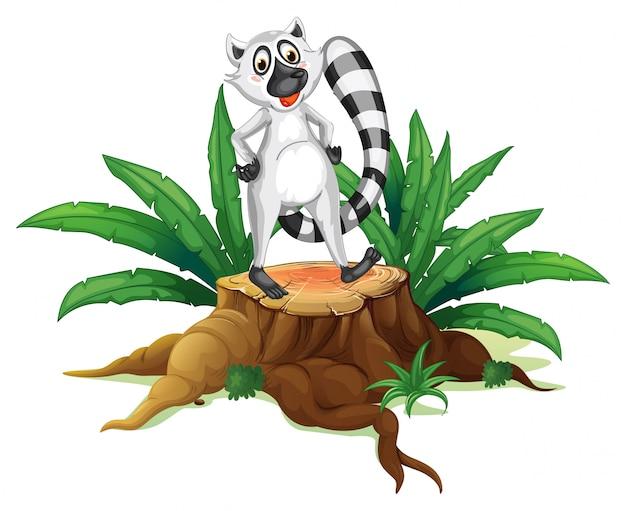 Un tronco con un lemure