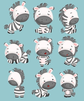 Un vettore di zebre carino in molte pose