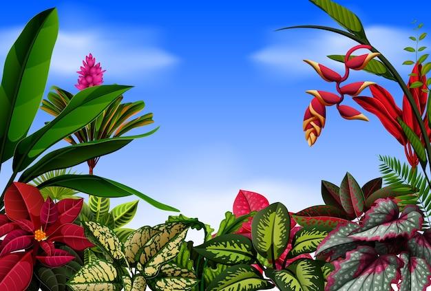 Una bella vista con e i fiori