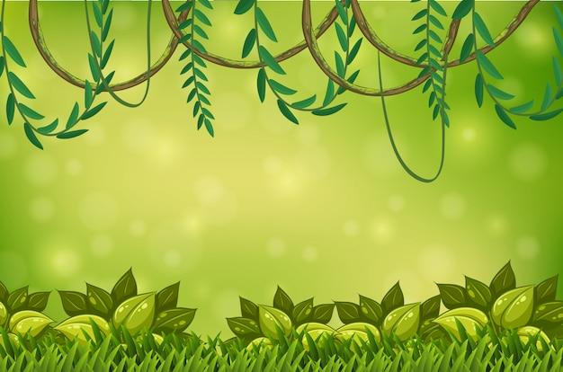 Una carta da parati green jungle and vine