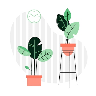 Una collezione di piante e fiori al coperto