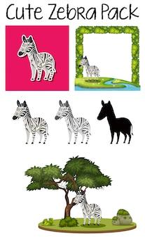 Una confezione di zebra carina