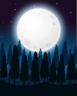 Una foresta nella notte della luna piena