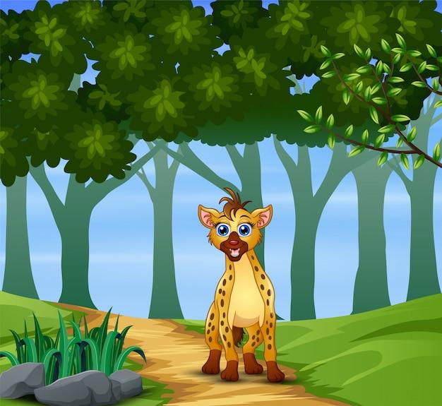 Una iena che cammina sulla foresta