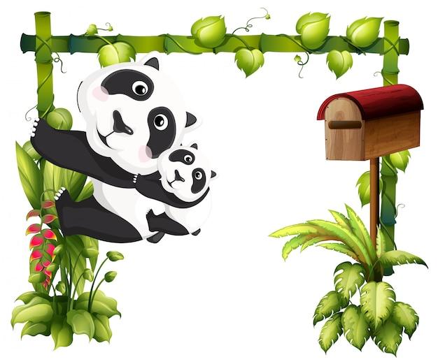 Una mamma panda insieme al suo bambino